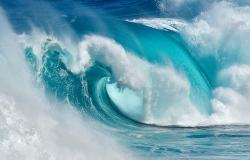 Daniel Montero · Cuando el océano se convierte en fuego azul