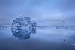 Roberto Iván Cano · Ice Fjord